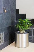 edelstahl blumenkasten bert pfe pflanzk bel blumentopf. Black Bedroom Furniture Sets. Home Design Ideas