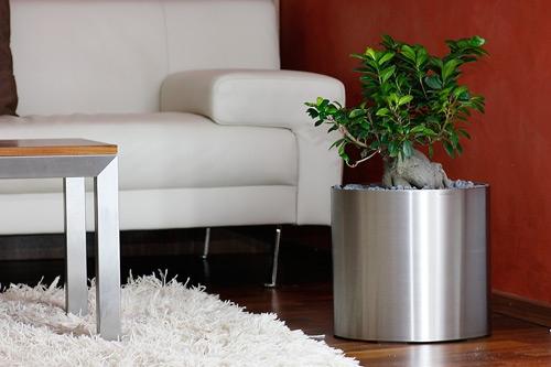 blumentopf rollen roller stella xxcm garten pflanz zubehr blumentopf with blumentopf rollen. Black Bedroom Furniture Sets. Home Design Ideas