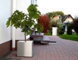 Edelstahl Pflanzgefäß 50x50cm, H=50cm