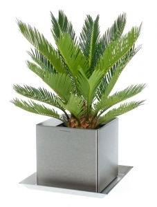 Edelstahl Pflanzgefäß 15x15cm, H=15cm